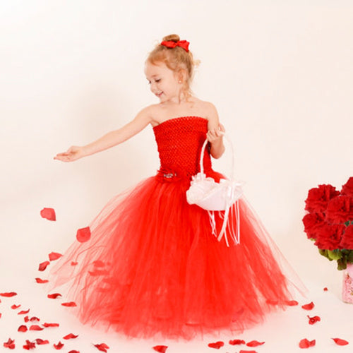 Elegant Girls Tutu Dress