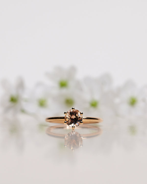 Finished: The Solitaire Ring with Champagne Morganite