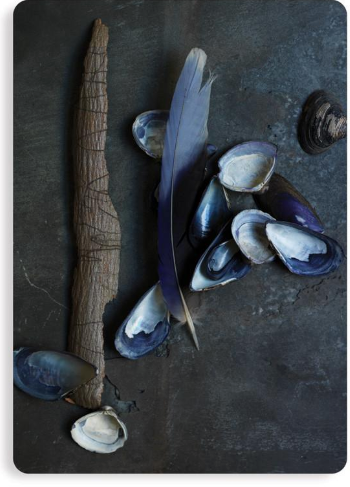 Postcard - Etcetera Mussels