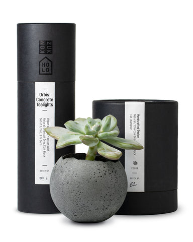 Concrete vessel and candle packaging with concrete succulent planter