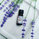 Potions Lavender, French Essential Oil - 100% Pure