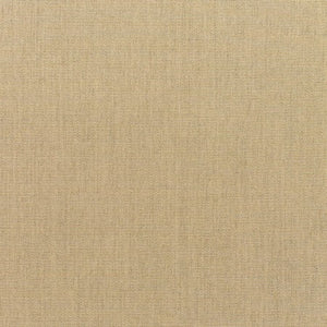 Sunbrella Canvas Heather Beige