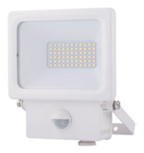 LED Floodlight White