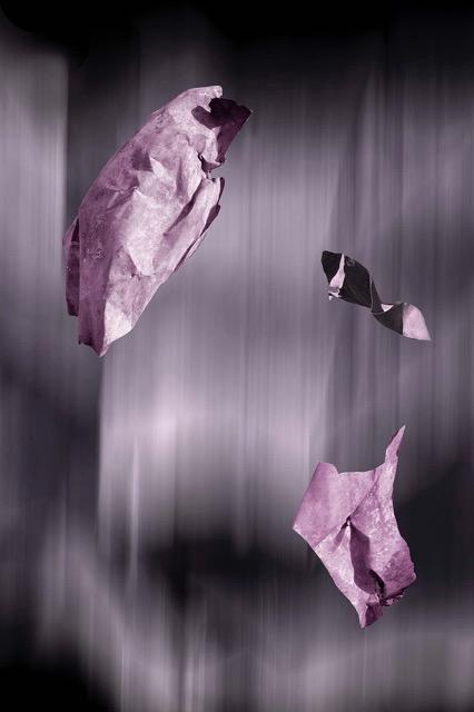 Artwork Fluxus I purple) Photomedia by artist Louise Allerton