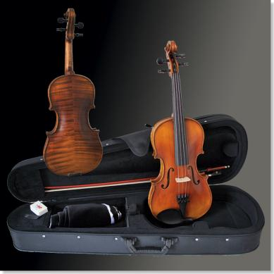 Sandner Dynasty Violinset 306 1/4