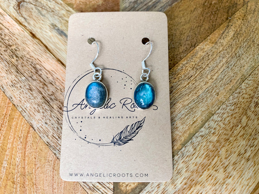 Labradorite Oval Drop Earrings