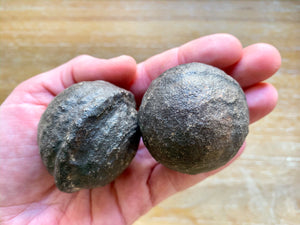 Moqui Ball Pair