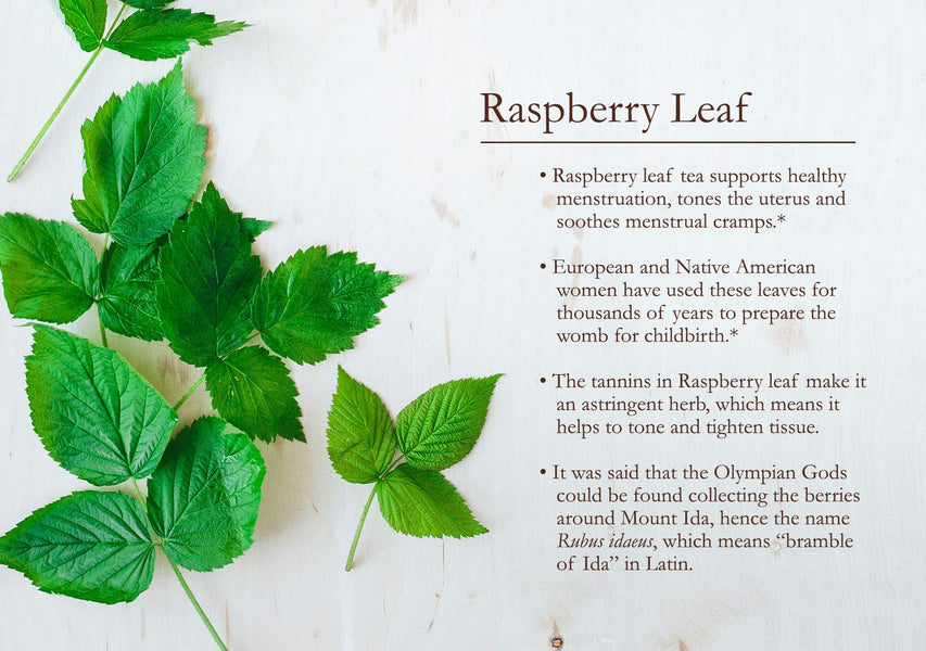 Raspberry leaf -your new best friend (and you don't need to be pregnant!)