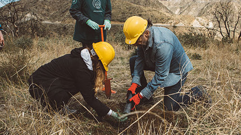 John Paul Dejoria and his wife planting trees to replace trees that were used in the making of Paul Mitchell products