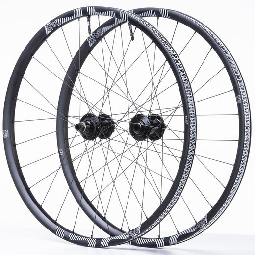 TRS Race Carbon Trail Wheel/Tire Bundle