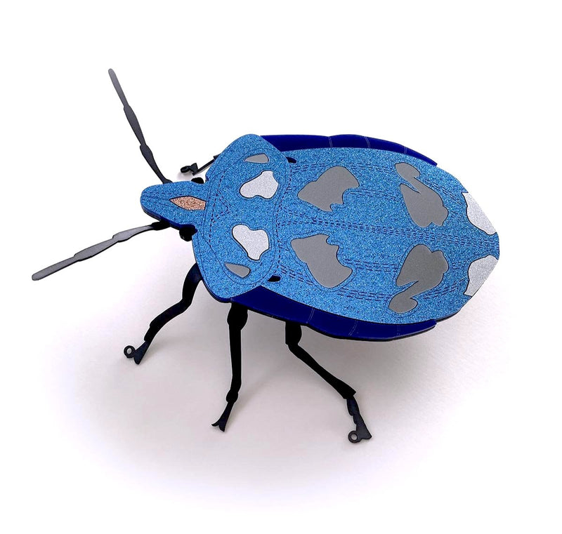 Blue Wall Beetle