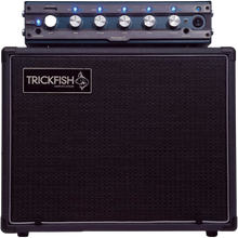 Load image into Gallery viewer, TrickFish 1k Amp with Cabinet Rental Reservation - Quantum Bass Market