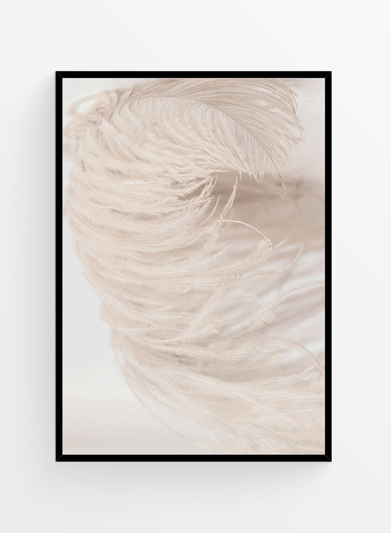 Organic Feather | Art Print