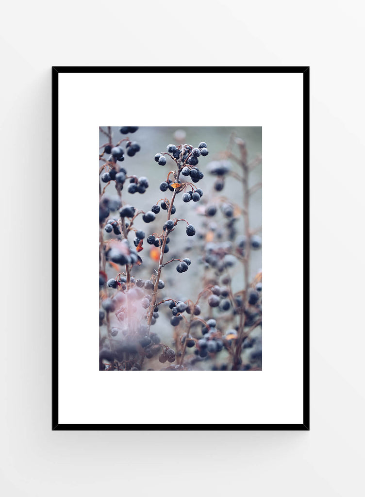 Frozen berries I Art Print