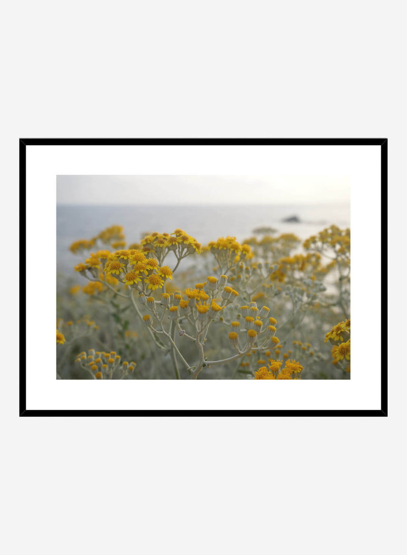 Yellow flowers | Art print