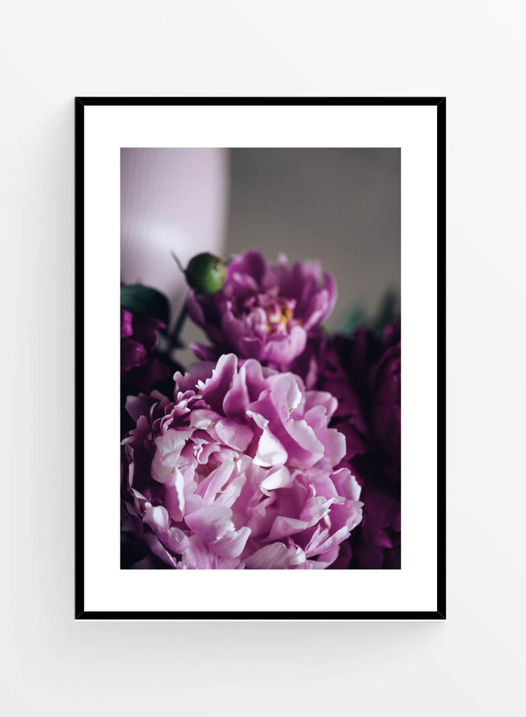 Purple lilac | Poster