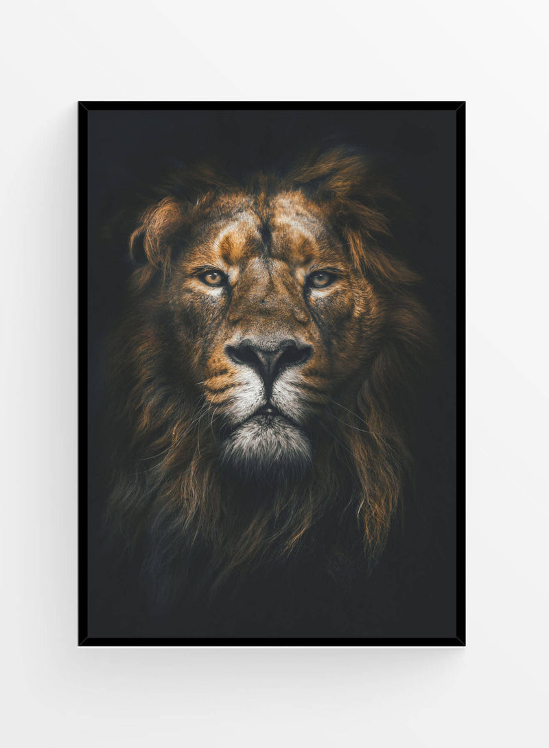 Lion | Poster
