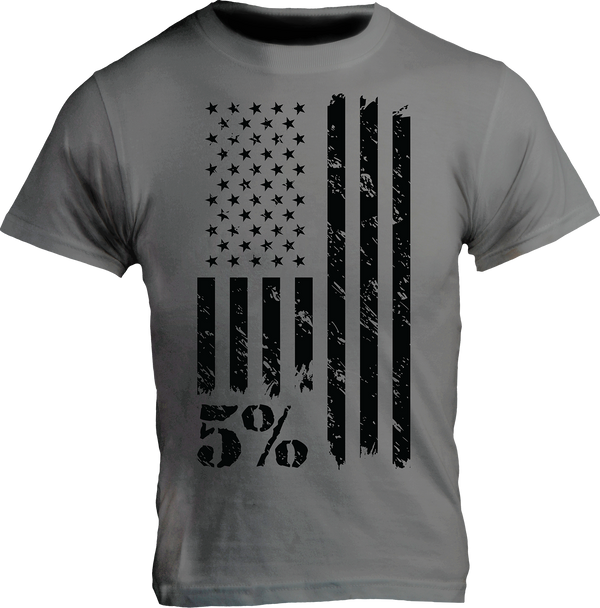 American Flag Graphic T-Shirt, Gray