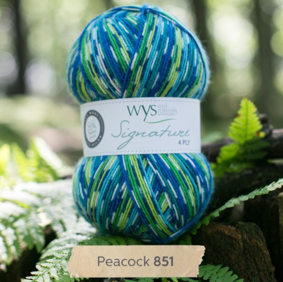 WYS Signature 4Ply - Country birds range PEACOCK 851