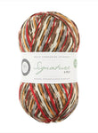 "West Yorkshire Spinners Signature 4ply Christmas Limited Edition ""Rob"