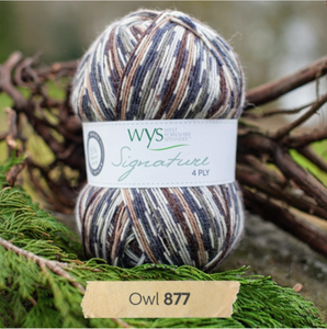 WYS Signature 4Ply - Country birds range OWL 877