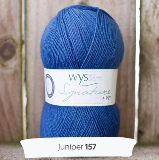 WYS Signature 4Ply - Spice rack collection  JUNIPER 157