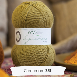 WYS Signature 4Ply - Spice rack collection  CARDAMOM 351