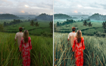 Ultimate Preset Pack 1 (12 Presets Desktop+Mobile) Our first and cheapest pack! Bright, colourful presets, tanned skin, eye popping! Too bright? Colours are easily adjustable. Great for food photos as well.