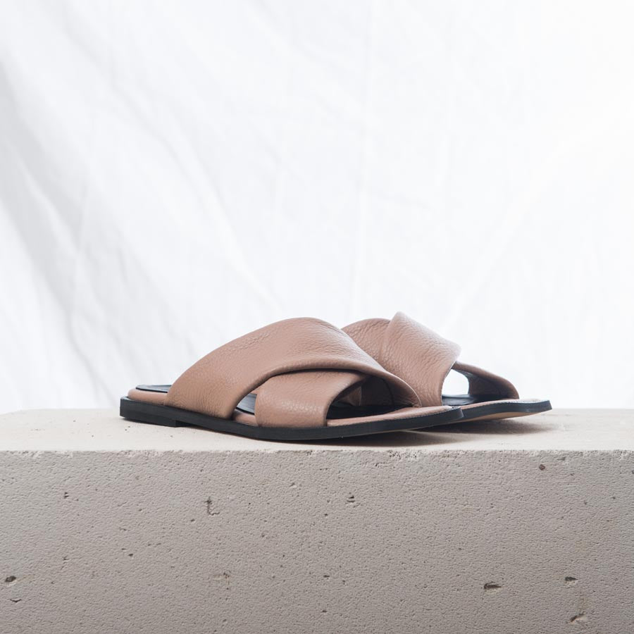 Terry X slides Pudra
