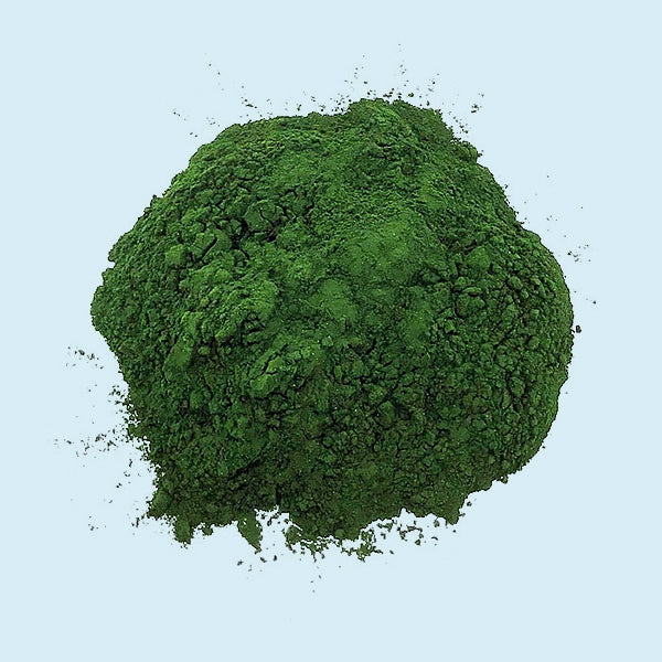 Chlorella Powder Health Benefits