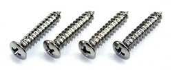 1965 1966 1967 1968 1969 1970 Mustang Sill Plate Repair Screws (Larger Thread) - Pony Enterprises