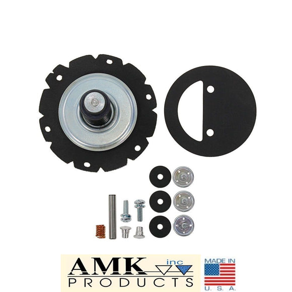 1968 1969 1970 1971 Mustang Carter Fuel Pump Rebuild Kit Boss 302 Boss 429 428CJ 429CJ - AMK