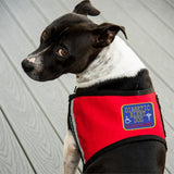 """Diabetic Alert Dog""   Patch."