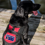 """Working- Do Not Pet""   Patch with American Flag ."