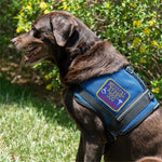 """Medical Alert Dog""   Patch."
