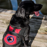 Service Dog Access Required Paw Patch