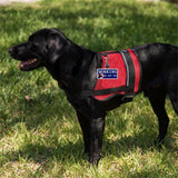 """Working Do Not Pet""-Service Dog Identification Patch Tag"