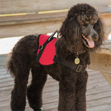 Customizable Padded Service Dog Vest with ID Badge Holder