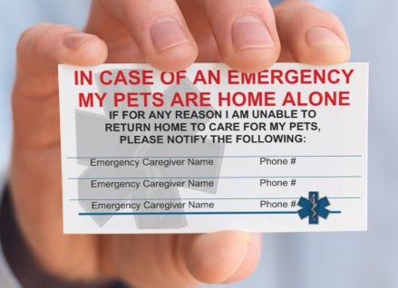 Pet Emergency Care Card (Pack of 2)