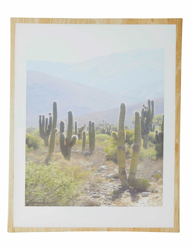 Cactus Tree Canvas Print