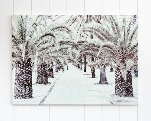 Canvas Print - Palm Tree Boulevard - 70 x 50