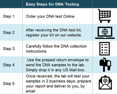 Procedure steps for the Grandparent DNA Test
