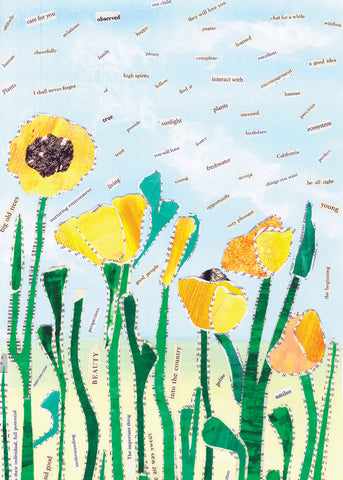 Mixed Media Poppies 1 (6-pack)