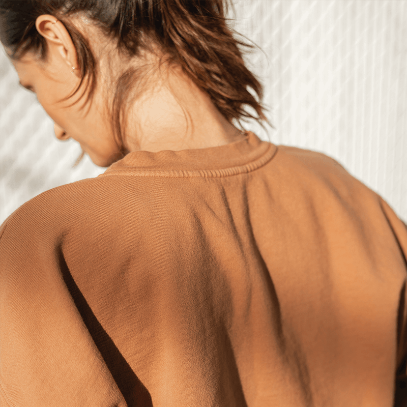 Sports & Rec Sweatshirt - Tan Lines