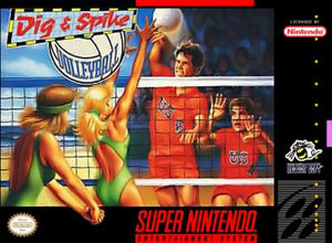 Dig and Spike Volleyball - SNES (Pre-owned)