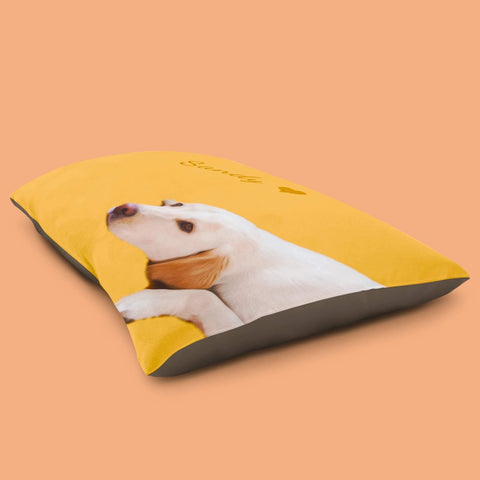 picture of a dog on a custom pet bed