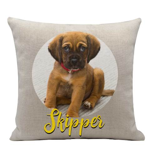 An Expressiffy personalized pet pillow