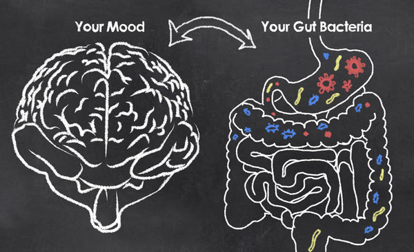 The Gut-Brain Axis: How Food Affects Mood