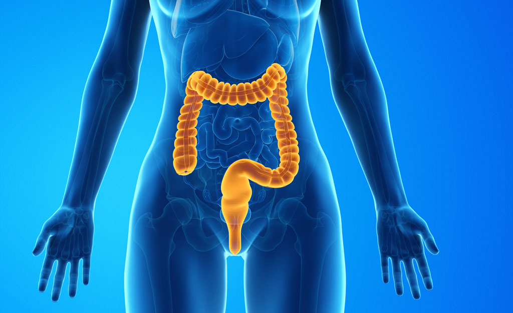 How Digestion Affects Your Hormones