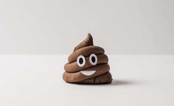 Understanding Your Poo